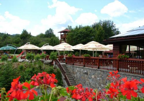 Terasa - Restaurant Albota